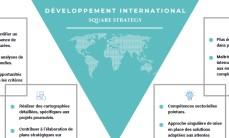 Écrit sur le développement international